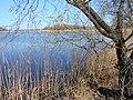 Drabiv, Cherkas'ka oblast, Ukraine - panoramio (9).jpg