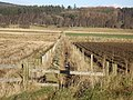 Drainage ditch from near Nethermains Cottage - geograph.org.uk - 1130983.jpg
