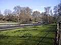 Drained lake in St James's Park - geograph.org.uk - 1178986.jpg