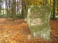 Druidenstein - geo.hlipp.de - 15160.jpg