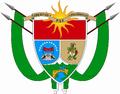 ESCUDO VF.PNG