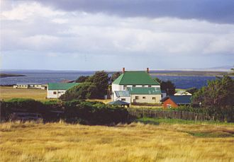 Tussock (grass) - Tussock-bunch grasslands, dormant season, in the Falkland Islands in the south Atlantic