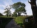 East Gortleigh - geograph.org.uk - 534404.jpg