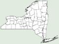 Ecballium elaterium NY-dist-map.png