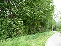 Ein Waldgebiet incl. mehrerer Flüsse, in Melle gelegen.15.jpg