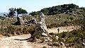 El Aljibe summit, stupendous views! (32321411824).jpg