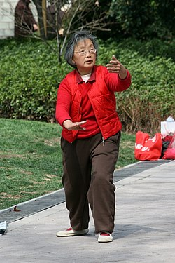 Elderly Shanghai woman practices tai chi.jpg