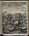 Elephantographia Curiosa 201.jpg