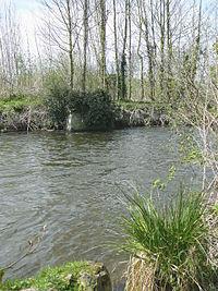 Essonne-rivière.jpg