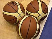 FIBA Basketballs 2004-2005.JPG
