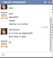 Facebook chat screenshot.png