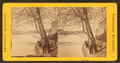 Fairmount Falls, Phila. Pa, from Robert N. Dennis collection of stereoscopic views.png