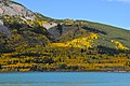 Fall at Barrier Lake - Kananaskis - panoramio.jpg