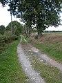 Farm track at Lower Langley, Milson - geograph.org.uk - 258437.jpg
