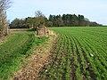 Farmland, Ewelme Park - geograph.org.uk - 677141.jpg