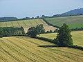 Farmland, Maiden Bradley - geograph.org.uk - 907102.jpg