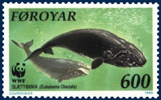 Faroe stamp 199 Eubalaena glacialis