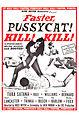 Faster pussycat kill kill poster (1).jpg