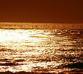 Fata Morgana of waves and sun glitter 2.jpg