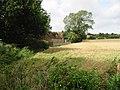 Field edge, looking towards Yewtree Cross - geograph.org.uk - 958504.jpg