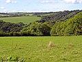 Field near Penrhiwgoch-uchaf, Llanboidy - geograph.org.uk - 961880.jpg