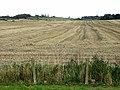 Field of stubble - geograph.org.uk - 1027889.jpg