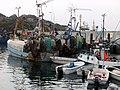 Fischerboote in Sisimiut.jpg