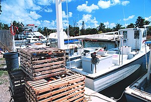 Tavernier, Florida - Crab boats in Tavernier