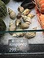 Fiskebryggen, Mathallen, Fishmarket, Bergen, Norway 2018-03-18. Buccinum undatum (kongesnegl, kongsnegl), etc. displayed for sale at Fjellskål sea food store.jpg