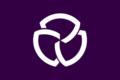 Flag of Sanwa Niigata.png