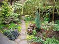 Flickr - brewbooks - Front garden - entrance to back.jpg