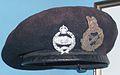 Flickr - davehighbury - Bovington Tank Museum 070 Monty.jpg