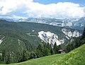Flimserwald1.jpg