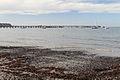 Flinders Foreshore and Pier, Flinders, Vic, jjron, 12.04.2013.jpg
