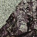 Fluoriterelief.jpg