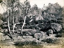 forêt de Fontainebleau (1874)