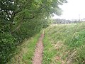 Footpath - geograph.org.uk - 515115.jpg