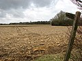 Footpath across a field to Hethersett - geograph.org.uk - 1744466.jpg