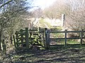 Footpath in Cowpen Bewley Woodland Park - geograph.org.uk - 1751769.jpg