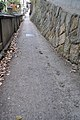 Footprints of a Cat 猫の足跡 - panoramio.jpg