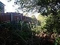 Former platform and overgrown trackbed.jpg