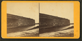 Fort Pulaski, by Wilson, J. N. (Jerome Nelson), 1827-1897 3.png