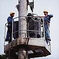 Fotothek df n-31 0000096 Elektromonteur.jpg