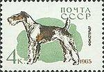 Fox-Terrier-Canis-lupus-familiaris SU 1965 stamp.jpg