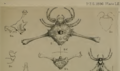 Friula wallacei by O. Pickard-Cambridge 1896.png