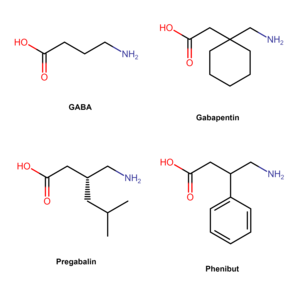 Gabapentinoid - Chemical structures of GABA and some major gabapentinoids.