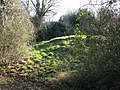 Gally Hills Saxon tumulus Banstead Surrey UK.JPG