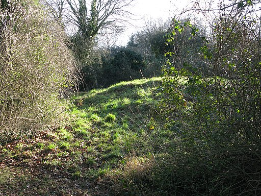 Gally Hills Saxon tumulus Banstead Surrey UK