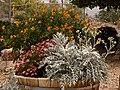Garden (26365264531).jpg