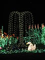 Garden d'Lights 2008 at the Bellevue Botanical Garden, img026.jpg